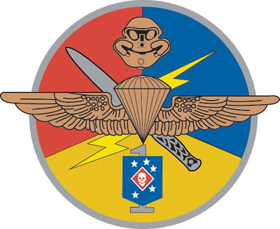 Emblema del M.C.S.O.COM. Detachment One